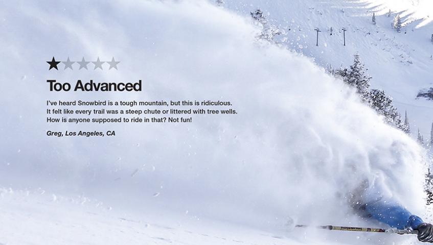 snowbird+ad